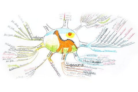 Mindmap of a nine-year-old with the dinosaur types, with painted dinosaur in the middle and the dinosaur types as branched branches